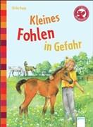 Kleines Fohlen in Gefahr: Der Bücherbär: Eine Geschichte für Erstleser