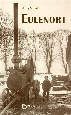 Eulenort: Aus dem unglaublichen Leben des Rudi Kleineich oder Glückssuche in einer harten Zeit | Cover