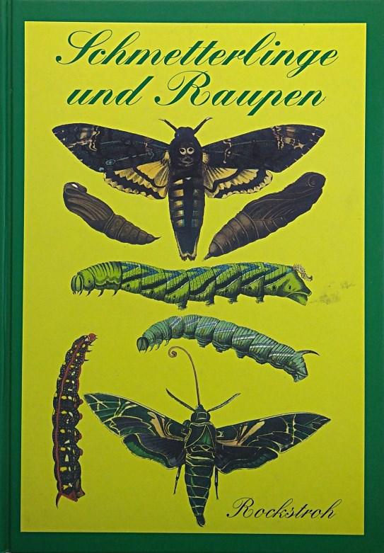 Schmetterlinge und Raupen