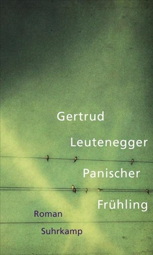 Panischer Frühling: Roman   Cover