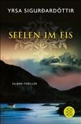 Seelen im Eis: Island-Thriller