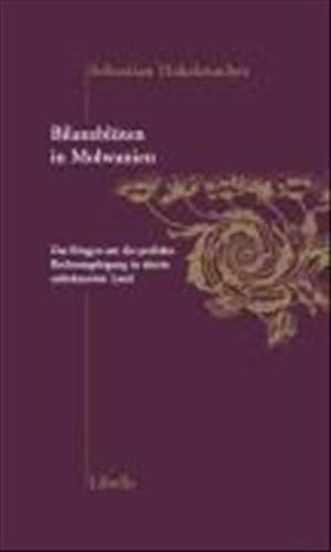 Bilanzblüten in Molwanien: Das Ringen um die perfekte Rechnungslegung in einem unbekannten Land | Cover