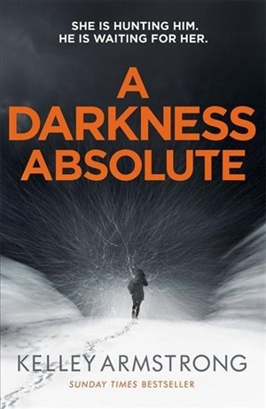 A Darkness Absolute: Book 2 in the Rockton series (City of the Lost)   Cover